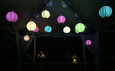Tropical pool lights